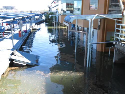 戸田競艇場が台風19号の影響で浸水・破損。G3オールレディース開催は中止に。埼玉県のボートレース場