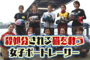 理不尽に殺処分される猫を救う活動をする「avet」に賛同する女子ボートレーサーたち。エイベット・女子競艇選手・動物殺処分| 競艇で彼氏がクズ化したから悪徳競艇予想サイトを沈めたい女のブログ