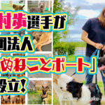 西村歩選手が社団法人いぬねことボートを設立犬好きで警察犬の訓練士を志していた過去もボートレーサー 